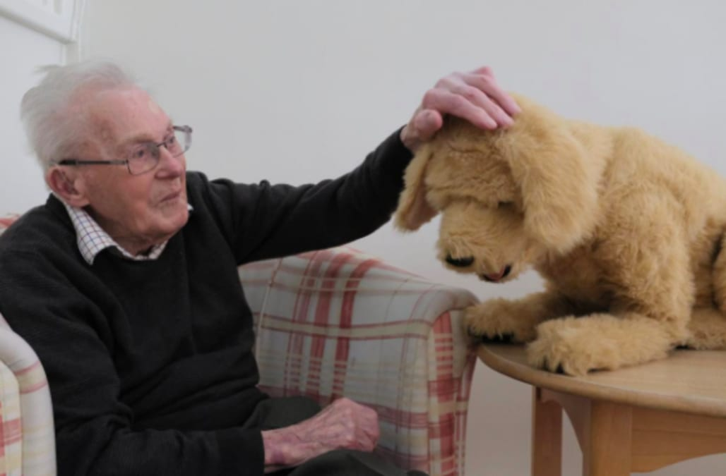 Robot dog lends a helping paw to dementia patients - AOL News