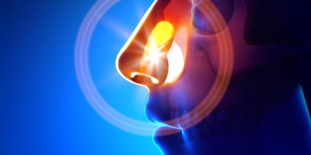 La sindrome rino bronchiale: una correlazione tra alte e bas