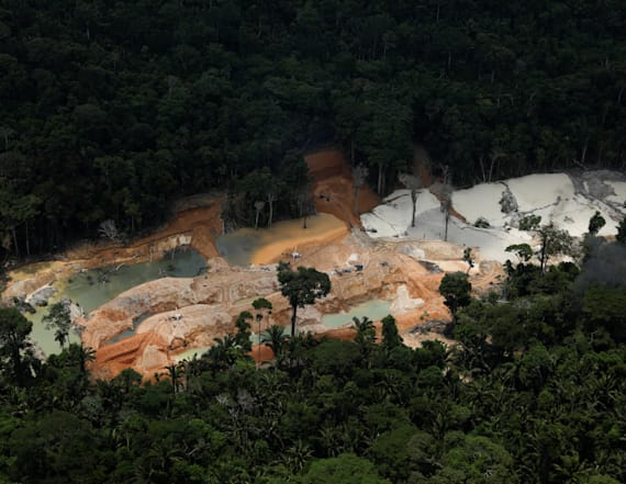Amazon rainforest under siege by illegal mines
