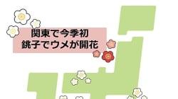 関東で今季初のウメ開花 東京はいつ頃?