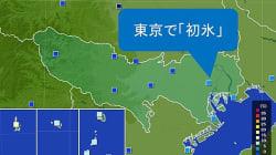 東京で『初氷』を観測