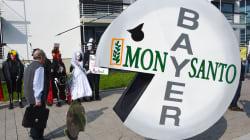 Monsanto et Bayer vont fusionner. Voici pourquoi ça devrait vous