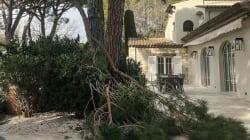Franck Dubosc a vu la tempête Eleanor passer de très