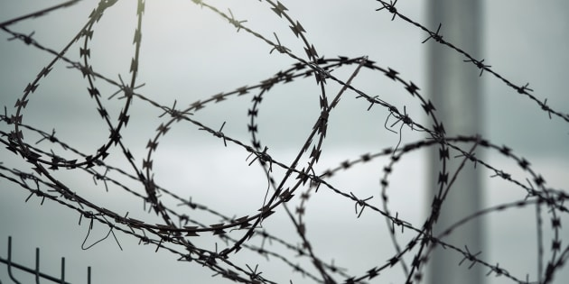 Line of barbed wire