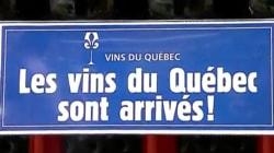 BLOGUE - Les vins québécois vendus en épicerie font un