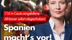 La ultraderecha alemana aplaude la devolución de los inmigrantes que saltaron a