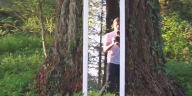 Cette balade hypnotisante dans les bois se regarde en boucle
