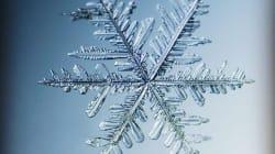 Ces images de flocons de neige en gros plan sont
