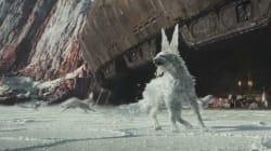 «Star War»: Vulptex, c'est le nom du renard de cristal, nouvelle créature de la