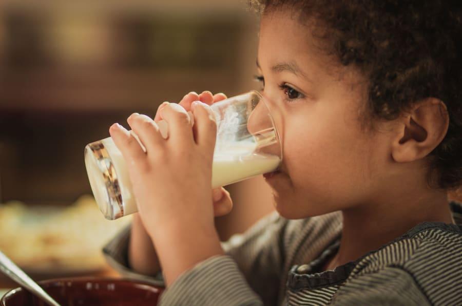 La leche es una fuente importante de nutrientes en niños y adultos.