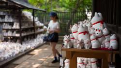 Un temple des chats porte-bonheur attire les maniaques