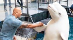 La visite de The Rock dans un aquarium n'est pas passée auprès de tous ses