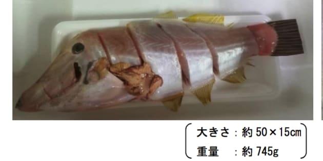 売れ残っていたソウシハギとみられる魚