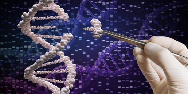 Après les ciseaux, voici le crayon à ADN qui pourrait s'attaquer aux maladies génétiques