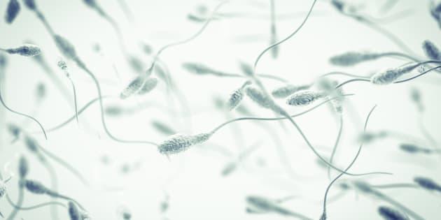 Sperme et pollution de l'air font mauvais ménage, selon cette étude