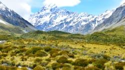 Nueva Zelandia: todo el país intercambiará regalos esta