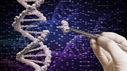 Per la prima volta scienziati tentano di modificare il dna direttamente all'interno del corpo del