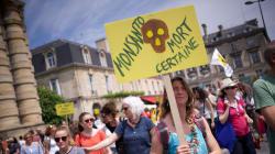 Pourquoi Monsanto était si détestée alors que ses concurrents ne font pas