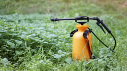 Des agriculteurs appréhendent un encadrement plus serré des