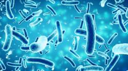 Le sostanze tossiche presenti sui vestiti, cellulari e nei cosmetici sono di più di quanto