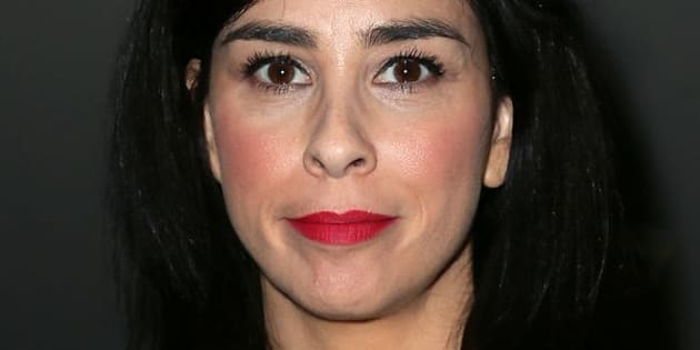 """I am insanely lucky to be alive,"" Sarah Silverman wrote."