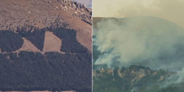 Incendi, bruciano gli alberi della scritta