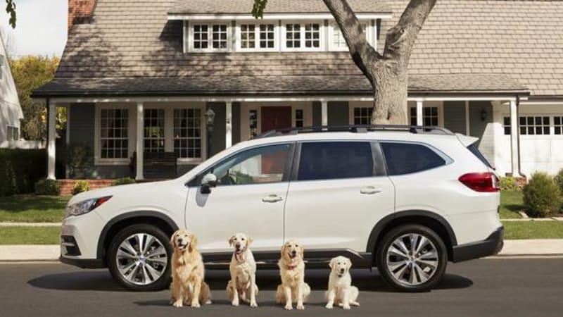 Subaru-with-dogs.jpg