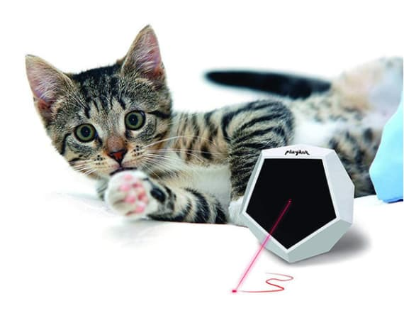 This laser toy will give your cat hours of fun