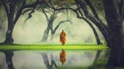Per smettere di essere schiavo della rabbia devi pensare come un monaco buddista. Un manuale ti insegna a
