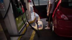 Sheinbaum propone calendario para cargar gasolina dependiendo el color del engomado