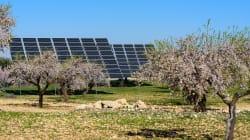 Es renovable, no contamina y es más barata… se llama energía
