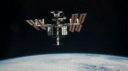 Il y a plus de 10.000 espèces sur la Station spatiale