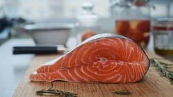 Le Canada autorise la production d'un saumon