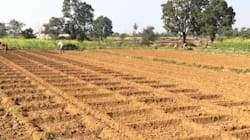 Using Tiny Pumps To Irrigate Vegetable Fields Could Be The Answer For Jharkhand's Small And Marginal