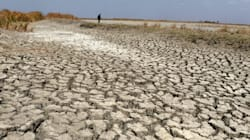 Kerala Govt Declares State As Drought-Hit, To Approach Centre For