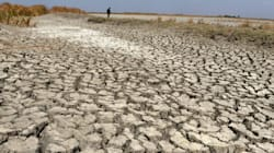 Tamil Nadu Declares Drought As 106 Farmers Kill Themselves In A