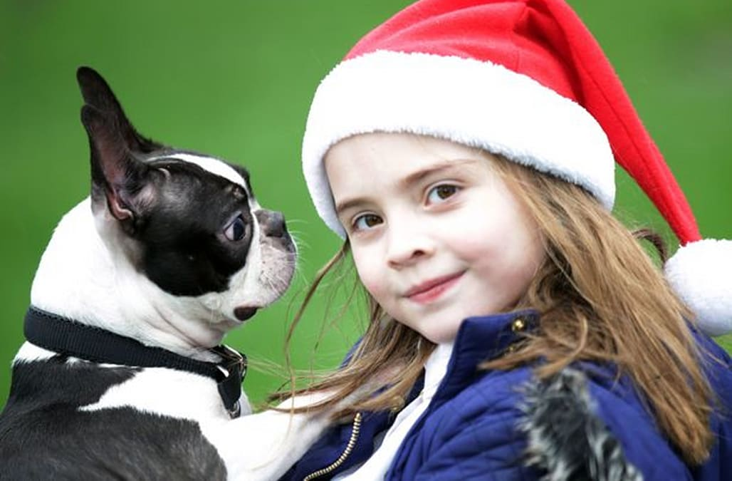 Blind Puppy Returned To Heartbroken Girl After She Wrote To Santa