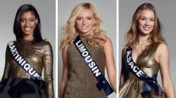 On sait qui présidera le jury de Miss France 2017 (et ça promet d'être