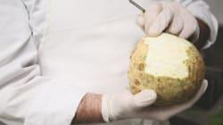 Avocat, mandarine, céleri-rave, comment laver ces fruits et légumes contaminés par les