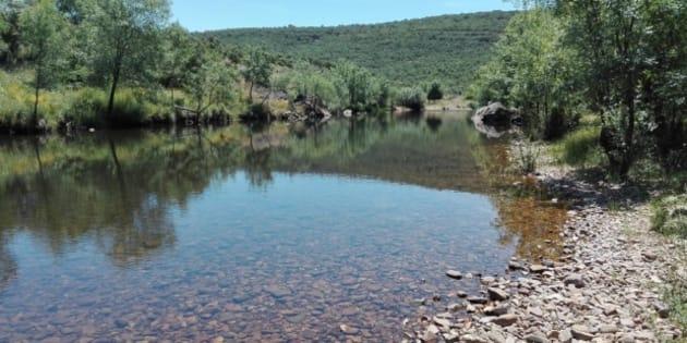 Imagen del río Estena, una Reserva Fluvial Natural del centro peninsular
