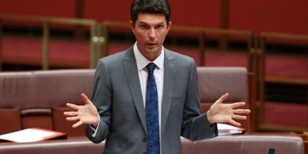 Scott Ludlum is back at work after taking time to treat his depression.