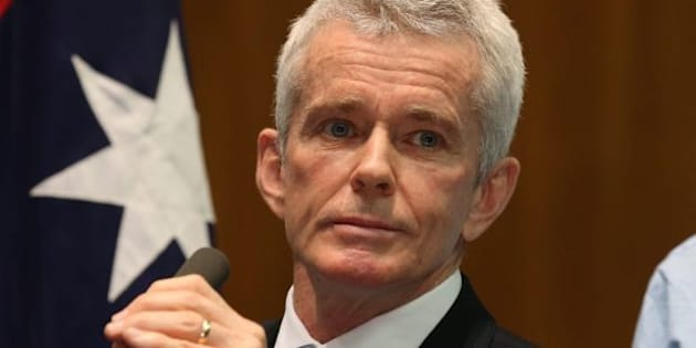 "A New Zealand MP has labelled One Nation senator Malcolm Roberts a ""village idiot""."