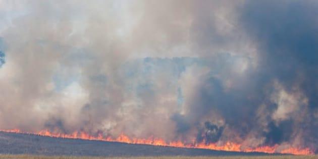 Bushfires have swept through thousands of hectares near Tarago