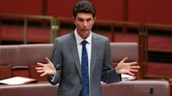Scott Ludlam Is Back At Work After Treatment For Anxiety And