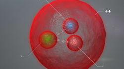 Cern: scoperta la particella Xi. Servirà a capire cosa tiene insieme la