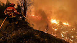 La sinistra si occupi di rischio incendi e siccità, tutto il resto è tatticismo