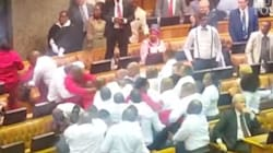 If You Think Our Parliament Turned Nasty, Check Out South