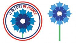 Pour France-Pays de Galles, l'hommage des Bleus aux victimes du 13