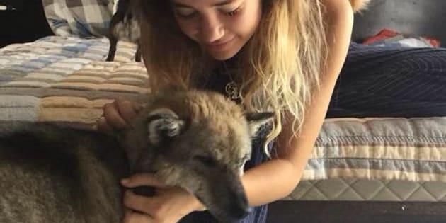 Amelia, 22 ans, dort depuis maintenant plusieurs nuits à l'Aéroport Paris-Charles-de-Gaulle de Roissy dans l'espoir de retrouver Marlin, une chienne qu'elle a sauvé d'une mort certaine au Viêt Nam.