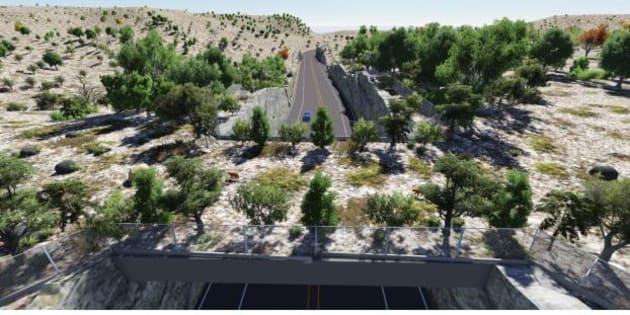 """Ces """"passages pour la faune"""" vont se multiplier au-dessus des autoroutes de l'État de Chihuahua."""